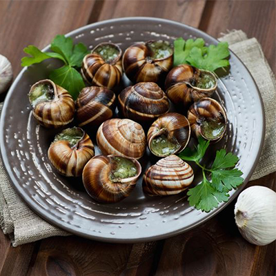 HOW TO CORRECTLY CONSUME SNAILS IN BOURGOGNE?