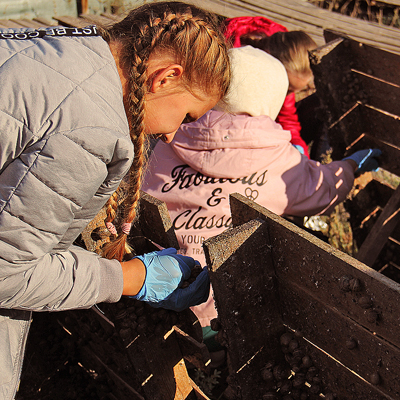 What's new you can learn during an excursion to a snail farm