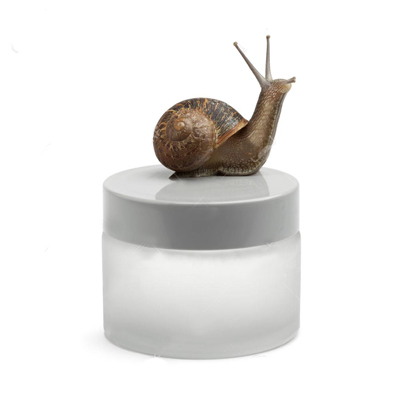 SNAIL EXTRACT: FASHION OR PANACEA?