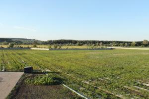 "RECORD OF UKRAINE! ""SNAILS HOUSE"" - THE BIGGEST SNAIL FARM"