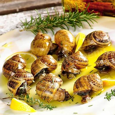 Snail dressing: white sauce